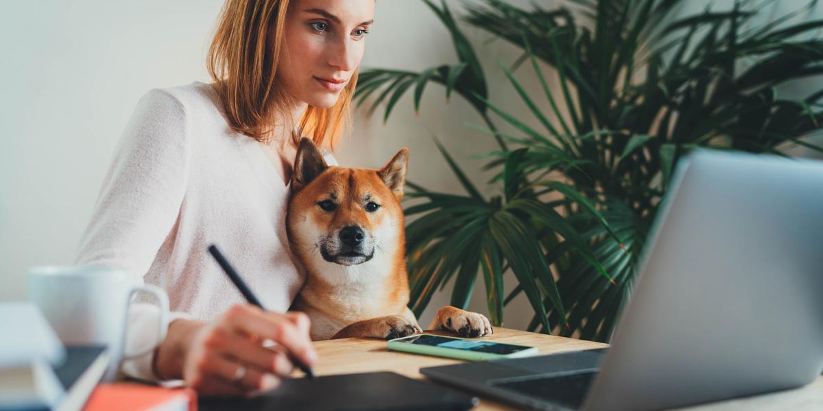 A UX designer sitting at her desk with her dog building out her portfolio on Behance