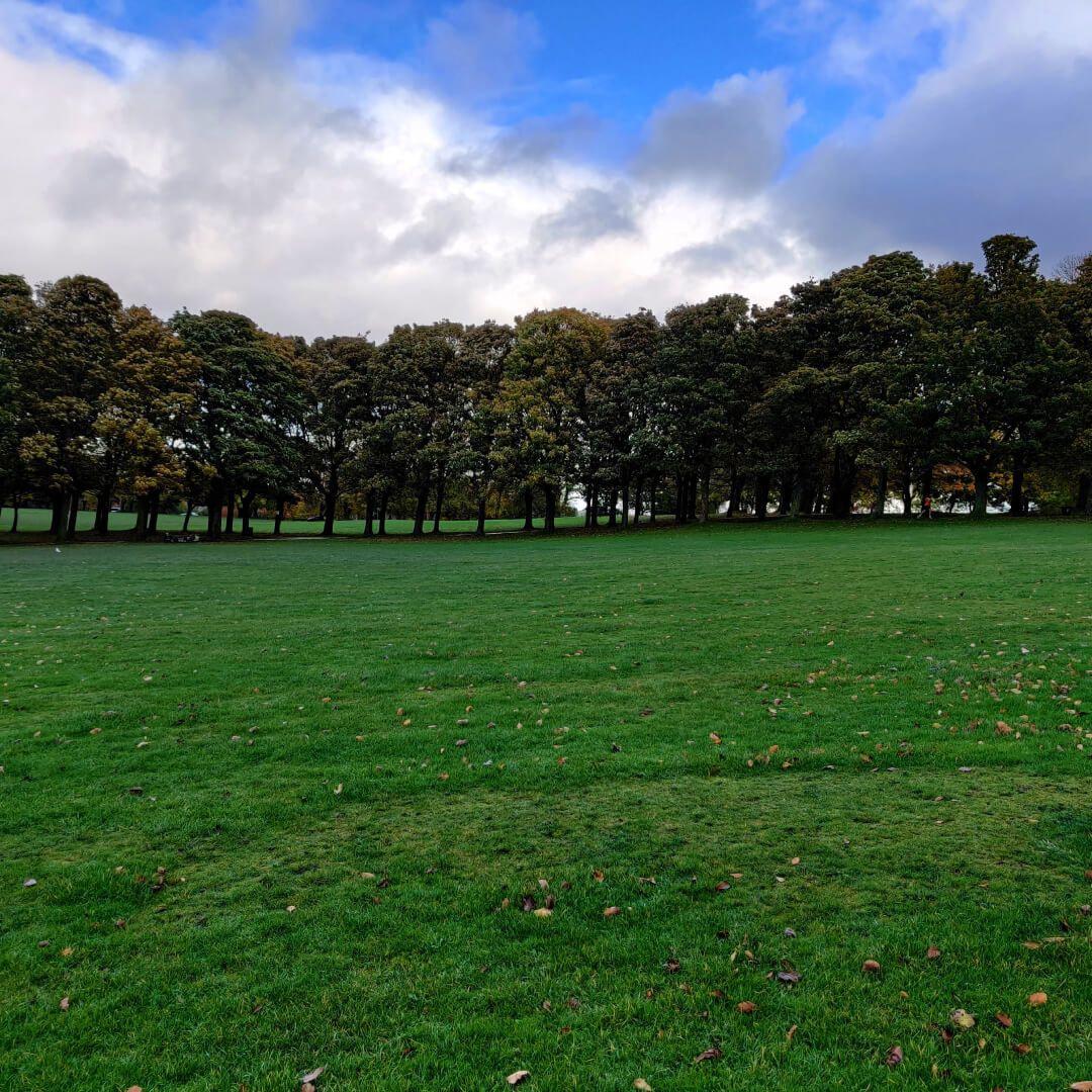 Woodhouse Moor/Hype picnic field