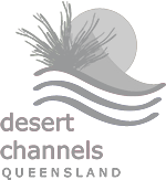 logo-desert-channel