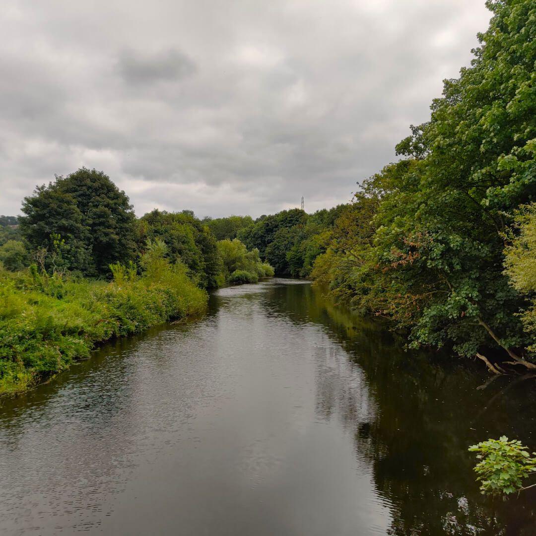 Rodley Nature Reserve entrance road over river