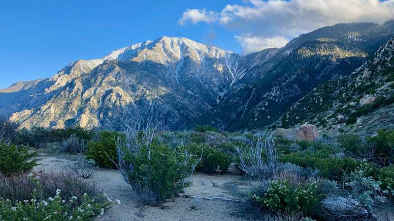 Evening view of San Jacinto Mountain from Fuller Ridge