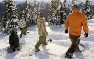 Small Snowboard Groups