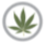 Marijuana Politics Small Logo