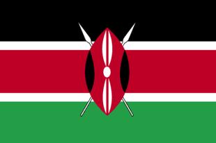 kenya-abortion-information flag