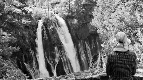 Bluejay at Burney Falls