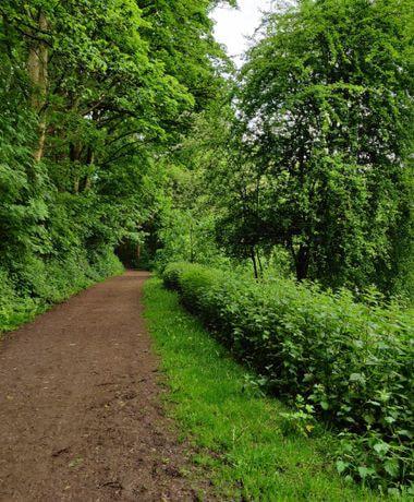Woodhouse Ridge path