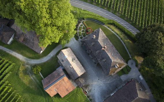 Familientradition und Schweizer Spitzenweine