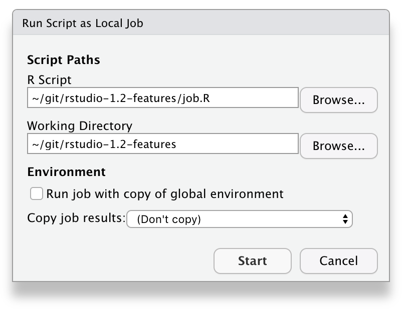 Dialog showing options for starting R script job