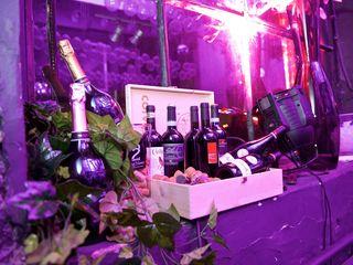 Galéria: Foto chcem-vino-galeria-41.jpg