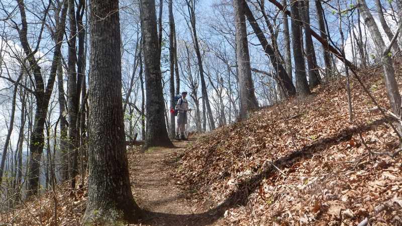 Climbing Shuckstack