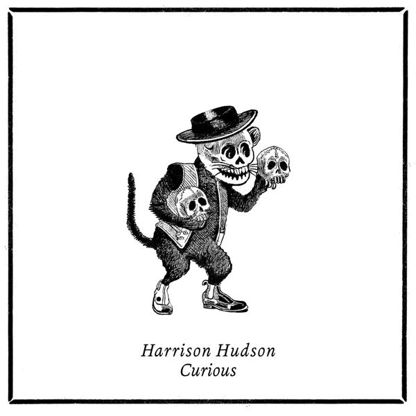 album art for Curious by Harrison Hudson