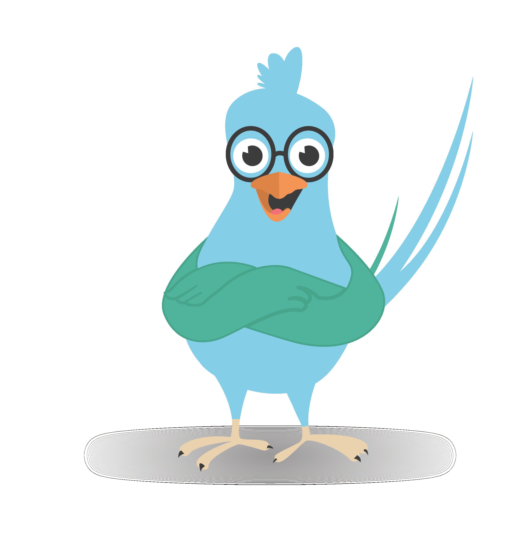 Confident parrot
