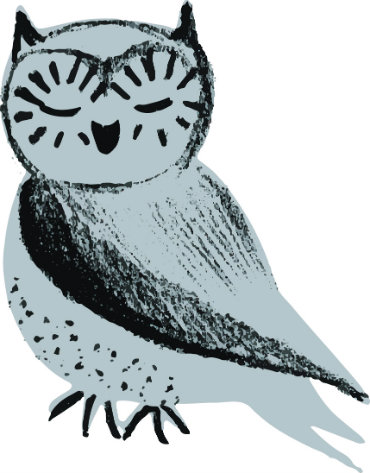 Oona the Suffolk Libraries Wordplay owl