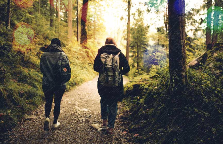 Two people going for a socially distanced walk in a forest