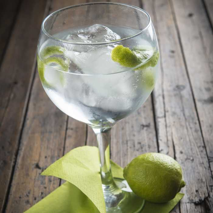 Gin and Soda Cocktail