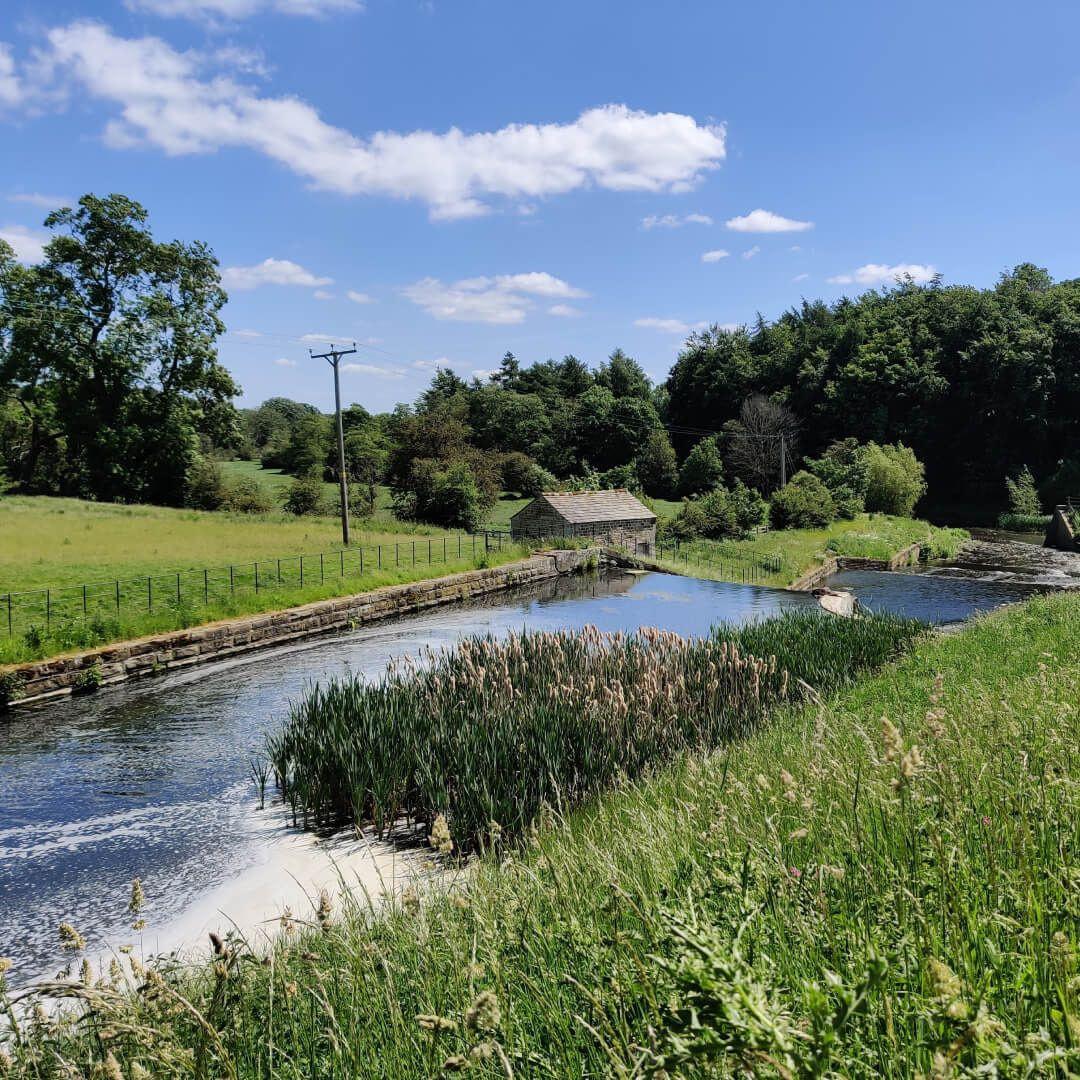Stream at Yorkshire Sculpture Park