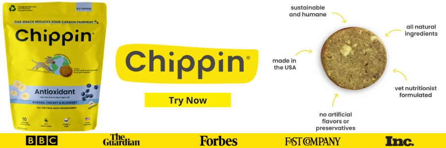 Chippin vs Blue Buffalo vs Jiminy's vs Shameless Pets Custom Image 2