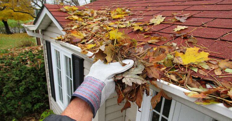 Cleaning Gutter Leaves