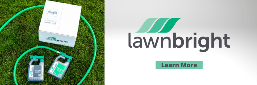 Lawnbright Review - Try Now