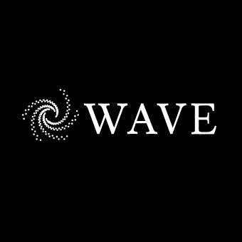Wave Financials