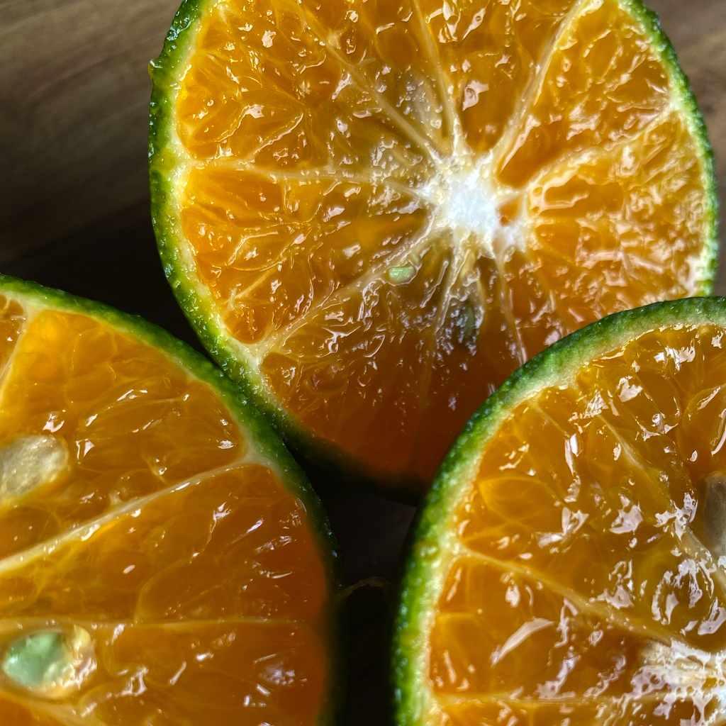 fresh-juices: orange