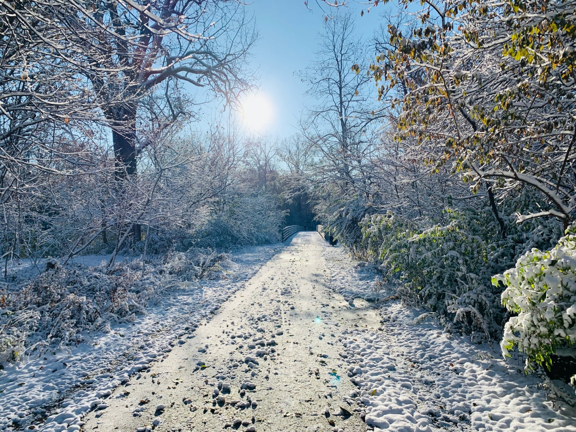 A frozen section of the bike trail with the sun overlooking