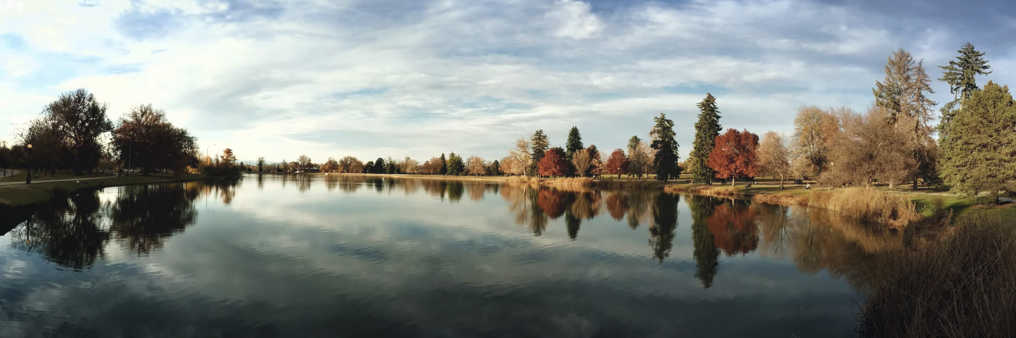 A panorama across a city lake. On the far side stand a mixture of pine trees and red- and yellow-colored deciduous trees.