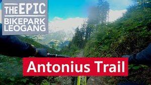 Antonius Trail | MTB Enduro Trail im Bikepark Leogang/Saalfelden