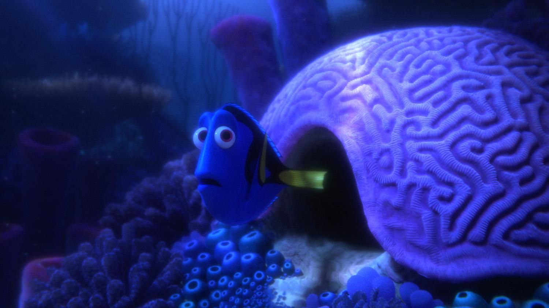 Dory sai de sua casa dentro de um coral em formato de cérebro.