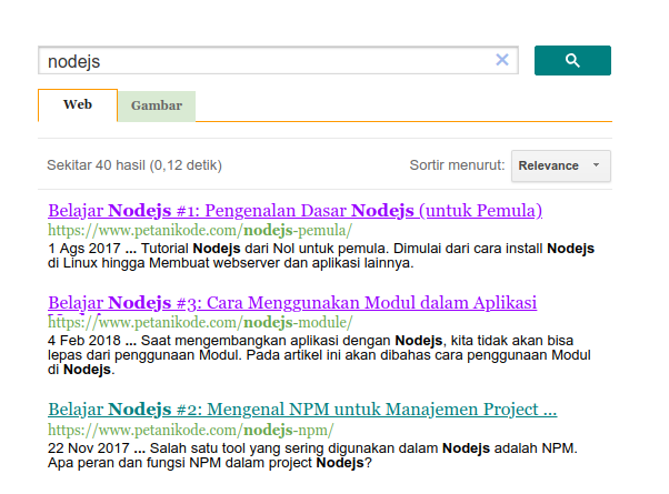 Search with Google CSE
