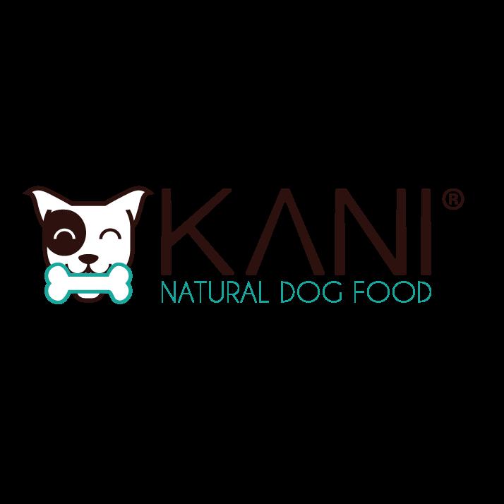 Dingo Startup logo