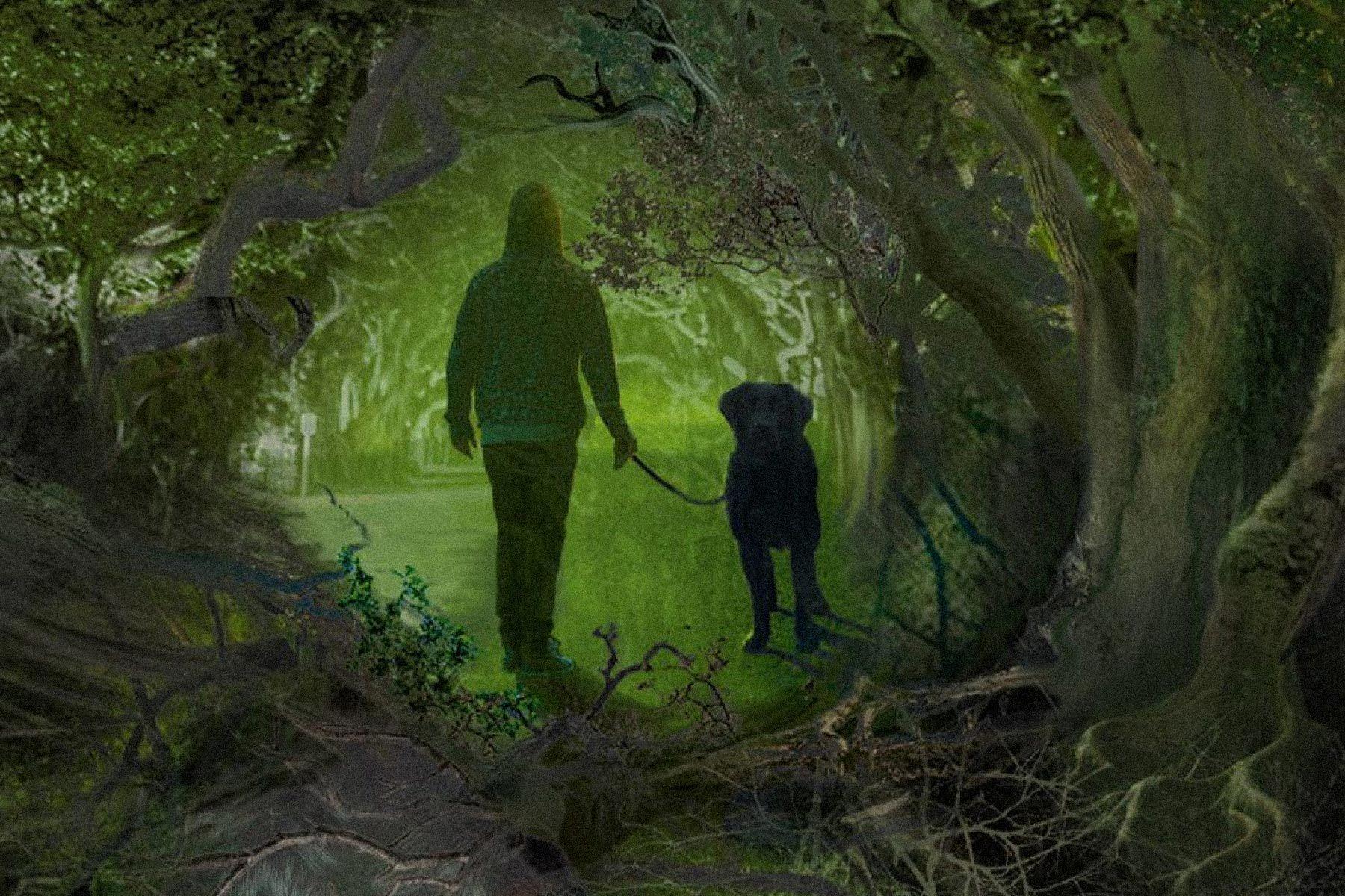 Иллюстрация книги «Чудовище сулицы Розы» Эдуарда Веркина