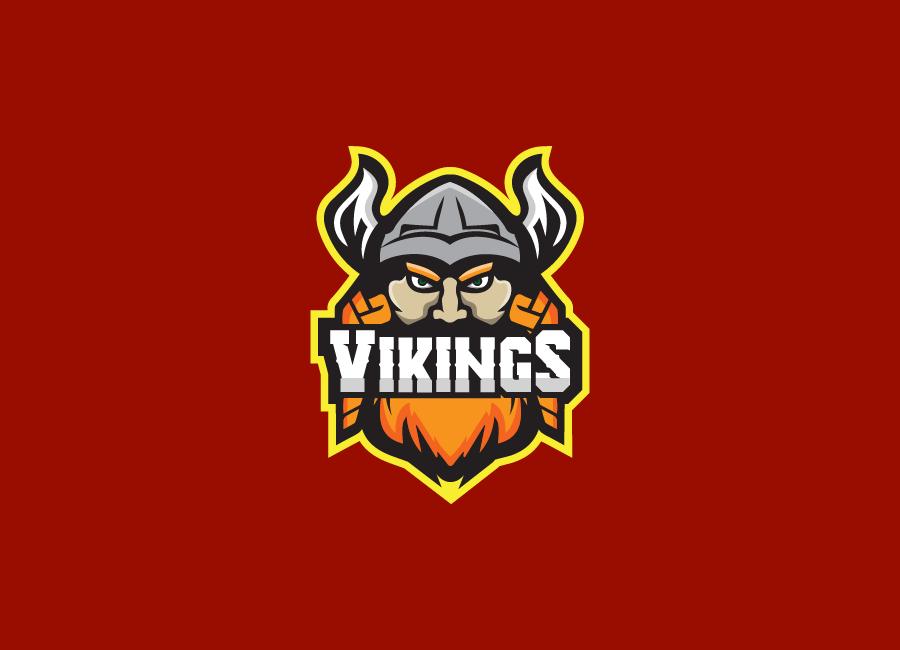 Team Vikings logo