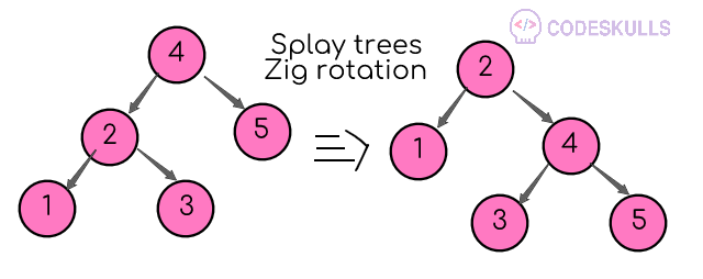 Splay tree Zig Rotation