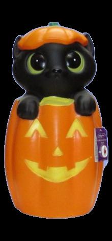 Kitty in Pumpkin photo
