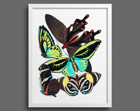 Papillons by EA Seguy - plate 1