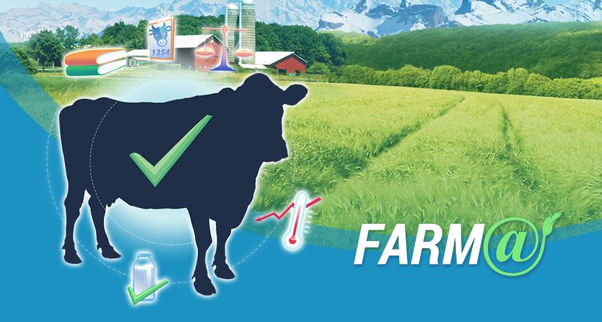 Farm@ image