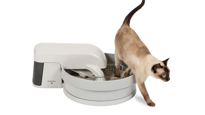 Cat with Auto-Clean Litter Box System