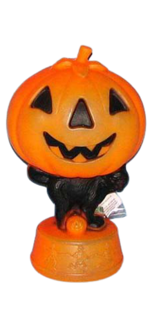 Pumpkin On Cat With Dancing Skeletons photo