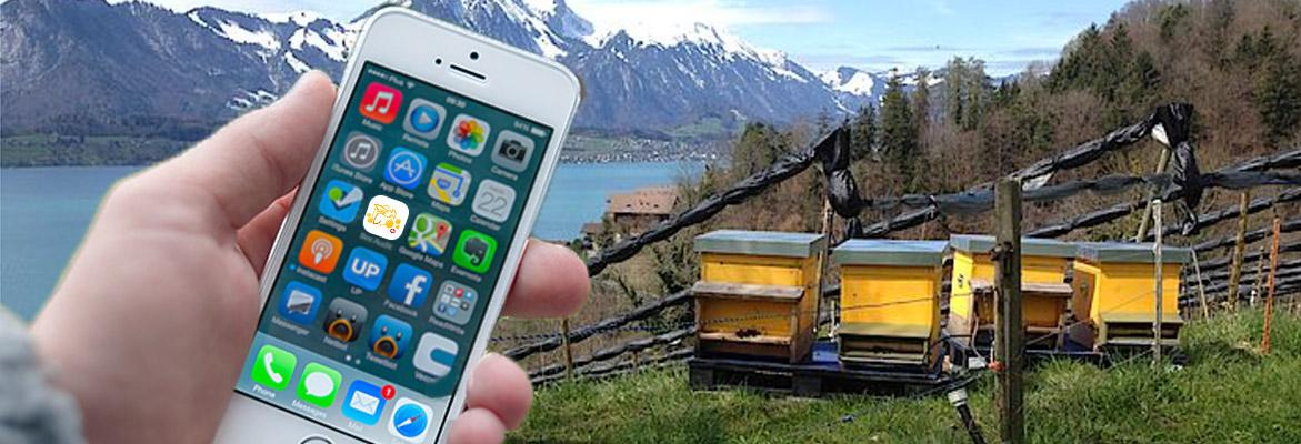 Eine Applikation fürs Mobiltelefon und Tablet