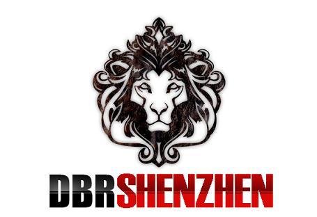 DBR Shenzhen Oy