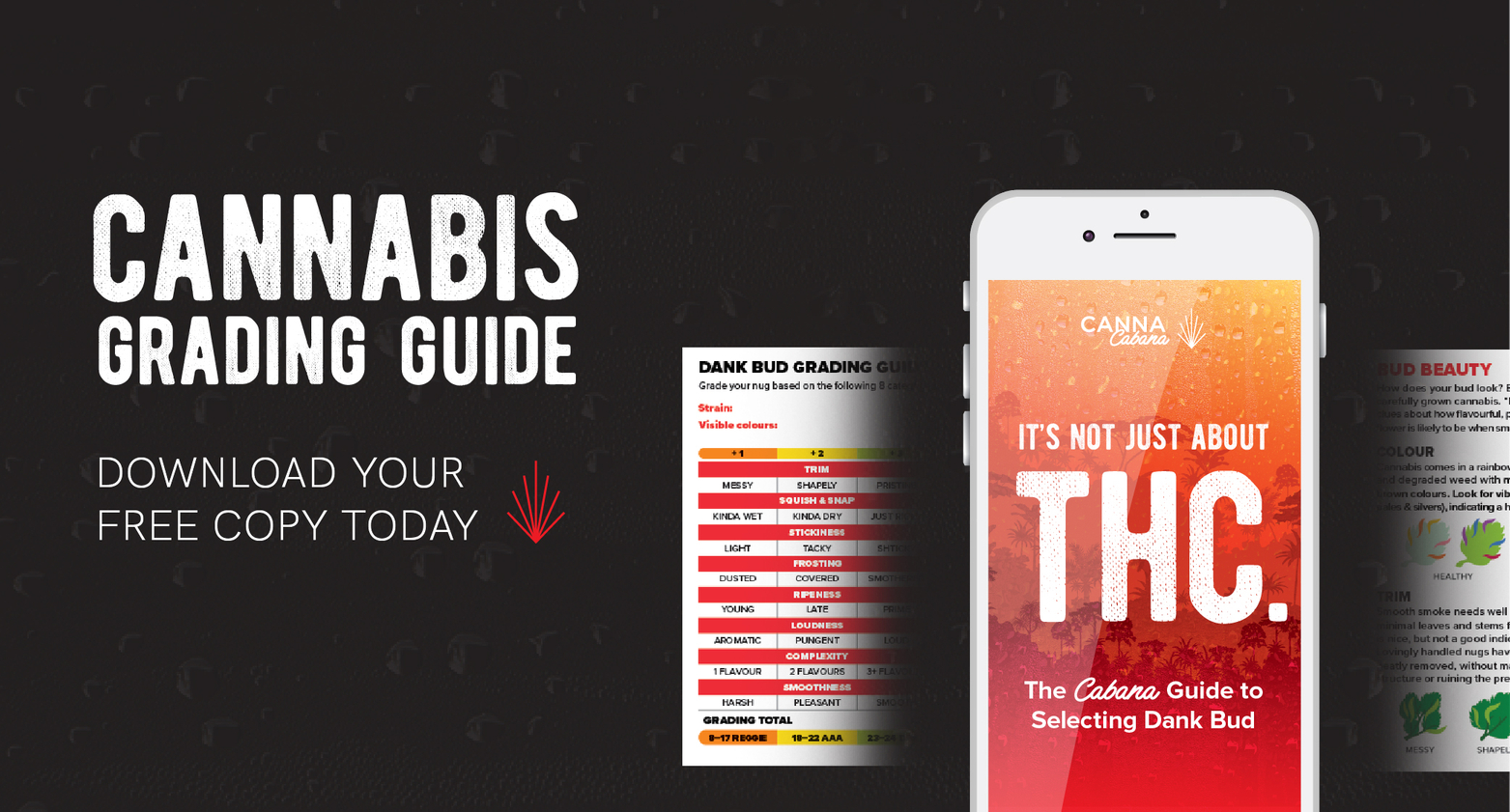 Beginners Guide To Good Weed
