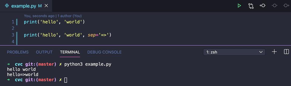 python print separate parameters