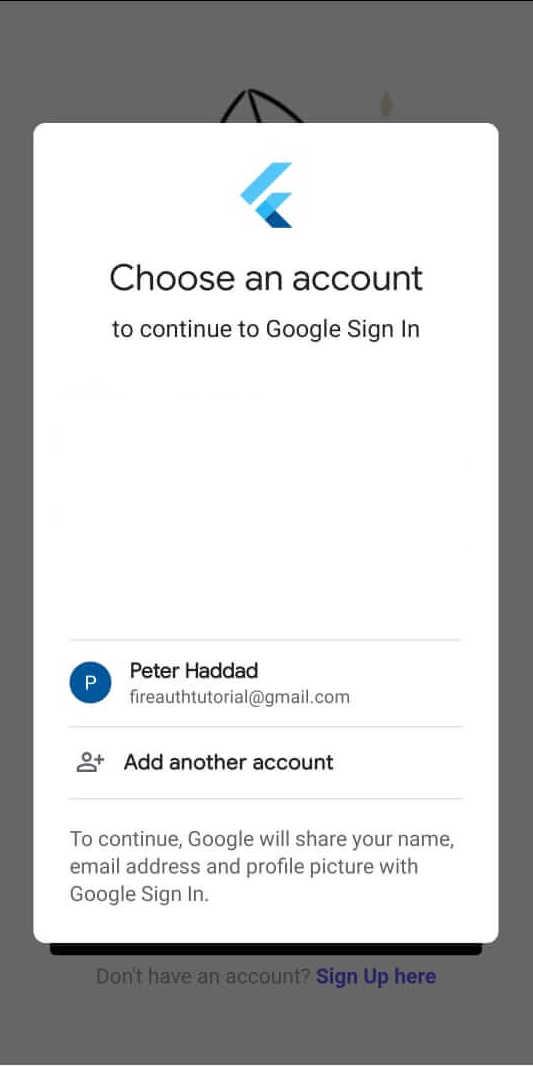 firebase auth google sign in flutter