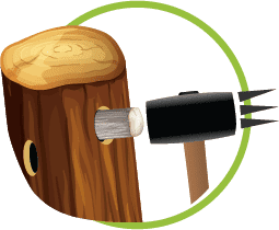 Plug spawn inoculation
