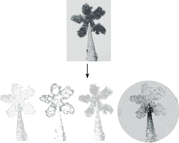 Raster image of palm tree transformed to multiple svg styles using SvgUrt