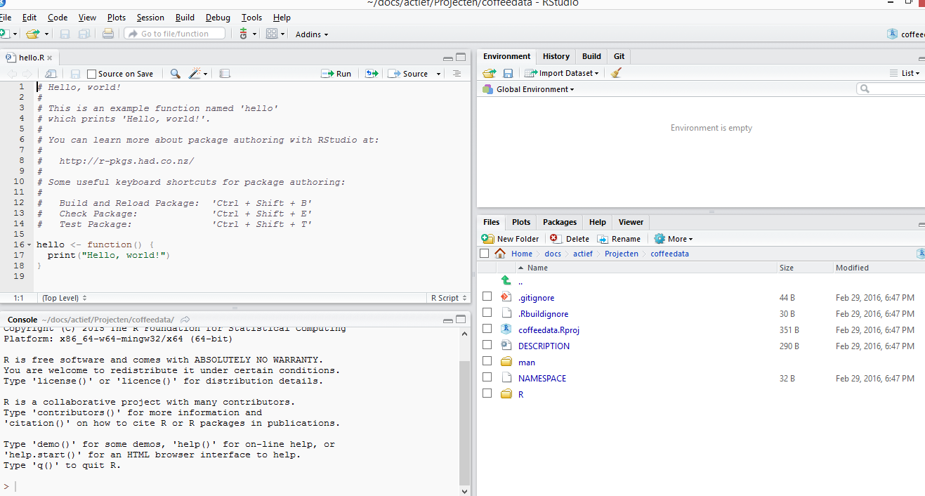 image of standard rstudio project