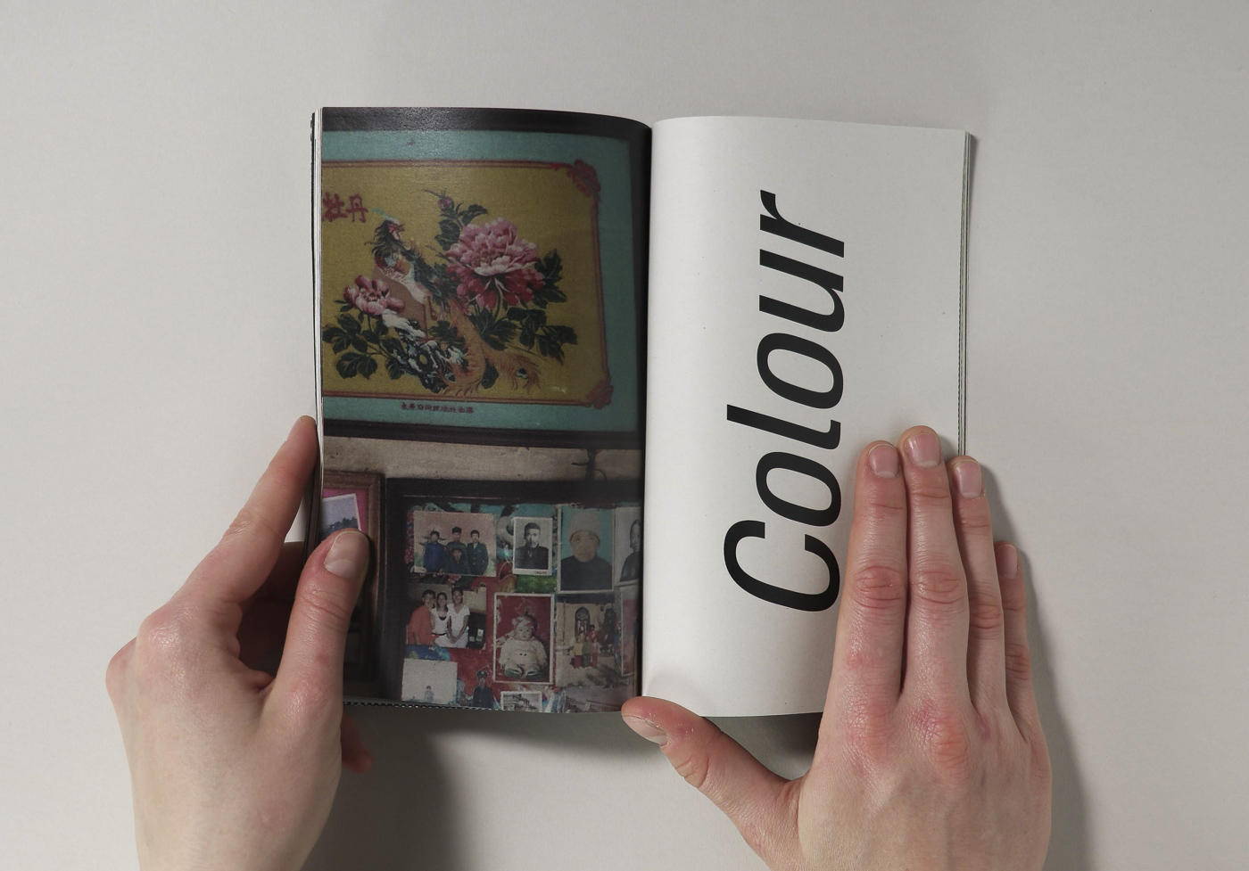 vf catalogue