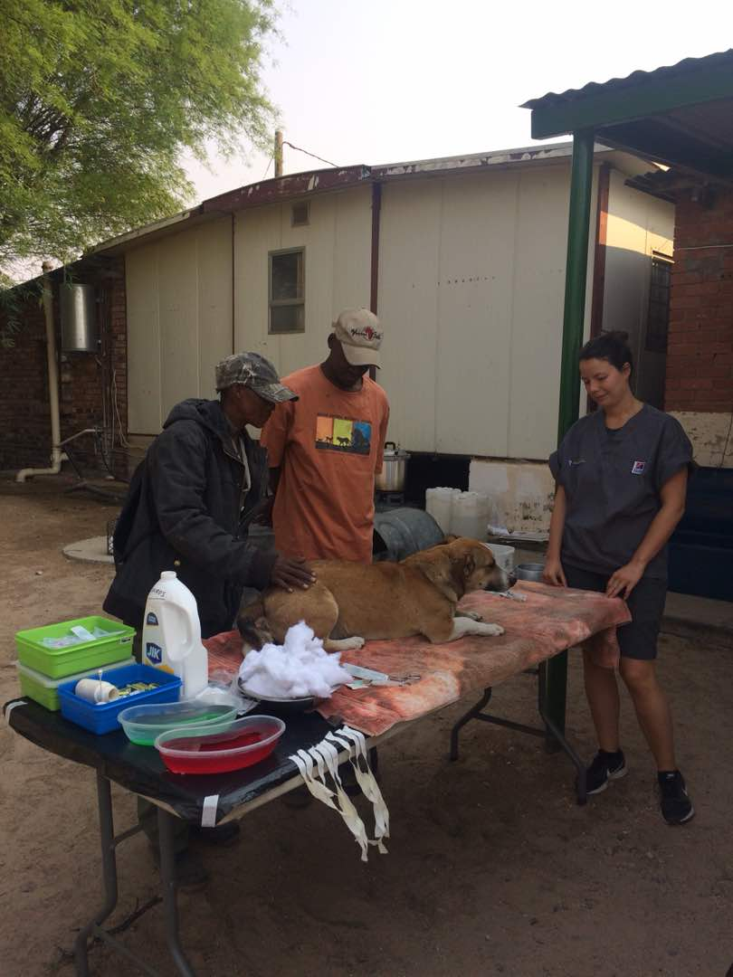 Operating Outdoors: Volunteering in Botswana