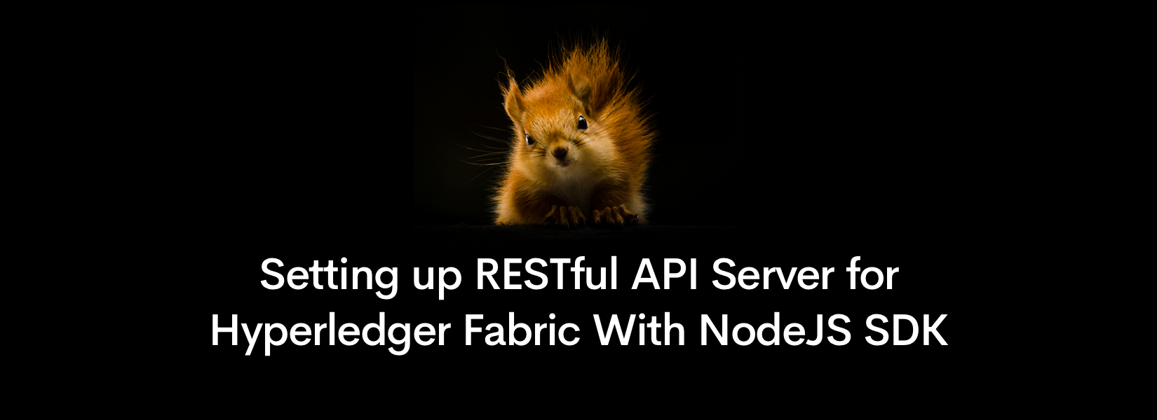 Setting up RESTful API Server for Hyperledger Fabric With NodeJS SDK